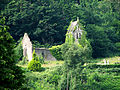 Ruined Church on the hill above Tintern Abbey - geograph.org.uk - 204622.jpg