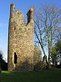 Ruins of St Mary's Church, Kirby Bedon - geograph.org.uk - 80724.jpg