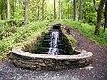 Running stream in Portglenone Forest - geograph.org.uk - 643122.jpg