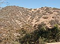 Runyon Canyon east trail.jpg