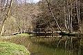 Rzeka Radunia, okolice wsi Kolbudy - panoramio.jpg