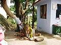 SRI PALATHU MUNIYAPPAN TEMPLE, THOPPUR - panoramio (8).jpg