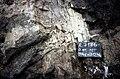 S of Mt Jackson irregular tuffisite dyke in gabbro breccia.jpg