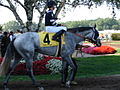 Sacred Light (horse) with jockey 2006.JPG