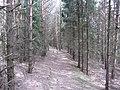 Salakas, Lithuania - panoramio (191).jpg