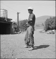 San Jose, California. Japanese farm laborer prior to evacuation. - NARA - 537658.tif