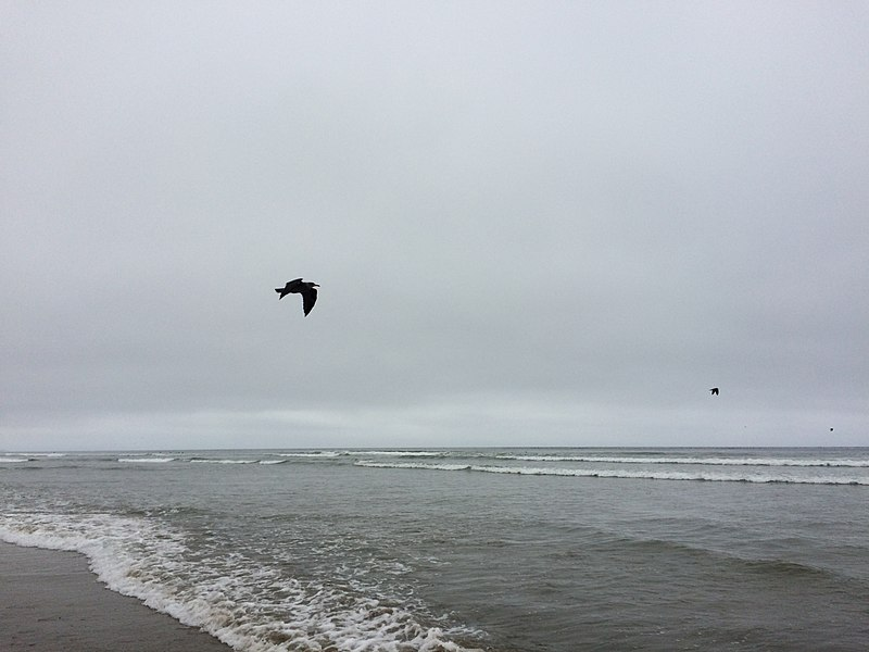 File:San Luis Obispo County, CA, USA - panoramio - Sergei Gussev (16).jpg