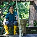 Sandakan Sabah Sepilok-Orangutan-Rehabilitation-Centre-11a.jpg