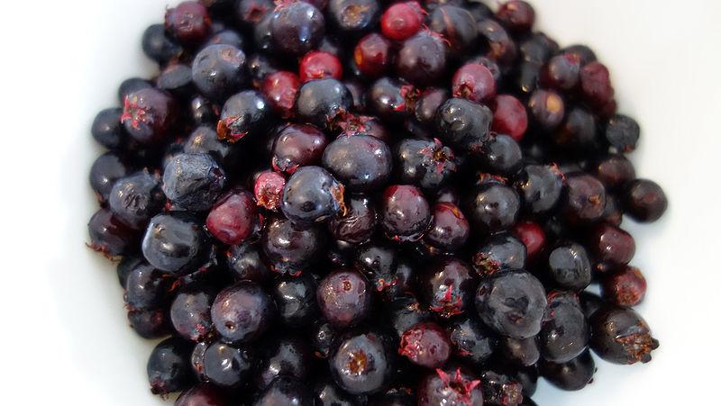 Ripe Saskatoon fruit