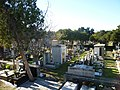 Sassari - Il cimitero (1).jpg