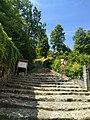 Scalinata al inizio Parco Regionale del Monte Barro.jpg