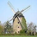 Schnarsleben Windmühle.jpg