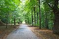 Schwarzenbergpark Schwarzenbergallee.jpg