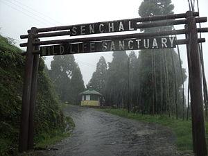 Senchal Wildlife Sanctuary - Image: Senchal WLS