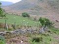Sheep pasture - geograph.org.uk - 429976.jpg
