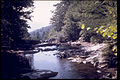 Shenandoah National Park SHEN9217.jpg
