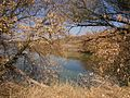 Shyshaky, Poltavs'ka oblast, Ukraine, 37822 - panoramio (1).jpg