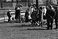 Sibeliuksen puisto - ser040223 - hkm.HKMS000005-km0000nz6m.jpg
