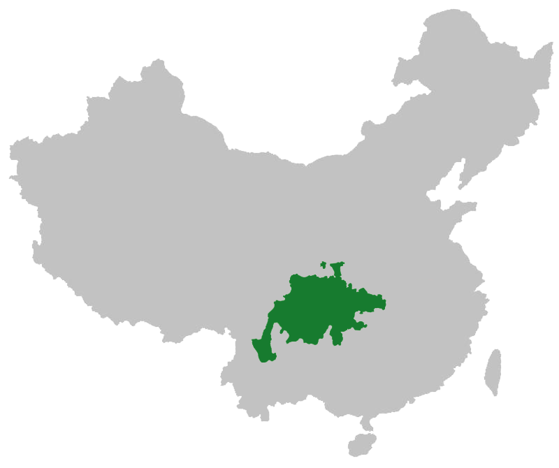 Sichuanese in China