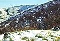 Sierra de Ayllón 1975 01.jpg