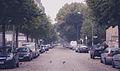 Simplonstraße (15741812659).jpg