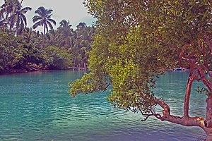 Tubabao - Small lagoon on Tubabao Island