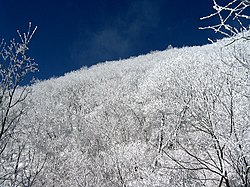 Snow in Sobaeksan national park.jpg