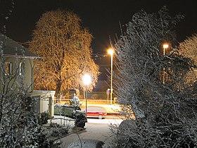 Snow scenery (1) 2006-01-26.jpg