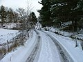 Snowy Sheader Road - geograph.org.uk - 675046.jpg