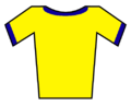 Soccer Jersey Yellow-Blue (borders).png