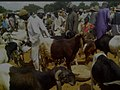 Sokoto Ram market.jpg
