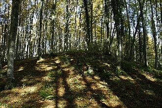 Aranc - The top of Tré pellay near Salagnat