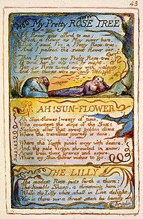 My Pretty Rose Tree poem by William Blake