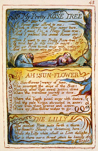 "Ah! Sun-flower - Copy AA of Blake's engraving of the poem in ""Songs of Experience"". This copy is currently held by the Fitzwilliam Museum"