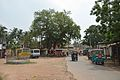 South Gate Junction Area - Lalbagh - Murshidabad 2017-03-28 5894.JPG