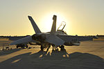 Southern Strike 15 EA-18G at sunset 141030-Z-YM847-003.jpg
