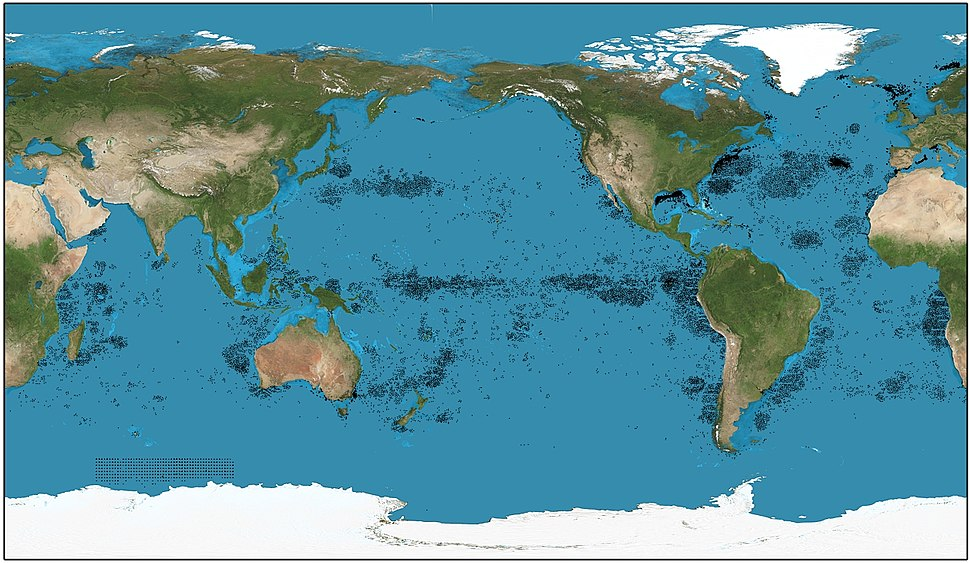 Sperm whale distribution (Pacific equirectangular)