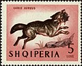 Stamp of Albania - 1964 - Colnect 342873 - Golden Jackal Canis aureus.jpeg