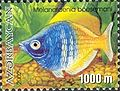 Stamps of Azerbaijan, 2002-633.jpg