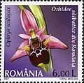 Stamps of Romania, 2007-023.jpg