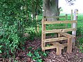 Stile and Footpath Junction, near Shirlett, Shropshire - geograph.org.uk - 456401.jpg