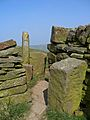 Stile on the Kirklees Way (3374020508).jpg