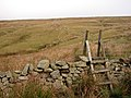 Stile on the old path to Whernside - geograph.org.uk - 253936.jpg