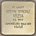 Stolperstein für Rozsa Stern Spronz (Budapest).jpg