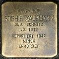 Stolpersteine Köln, Sophie Kaufmann (Großer Griechenmarkt 75).jpg