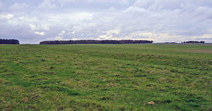 Stonehenge Cursus - The southern ditch and bank of the Cursus. It runs west to the gap in the trees.