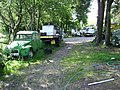 Study in green, encampment, Ideford Common - geograph.org.uk - 1371458.jpg