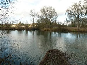 Balzac, Charente - Confluence of the Argence with the Charente