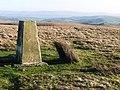 Summit of Banc y Celyn - geograph.org.uk - 669377.jpg