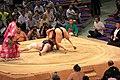 Sumo tournament (15528340827).jpg